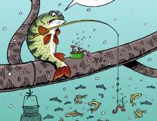 Perche à la Pêche