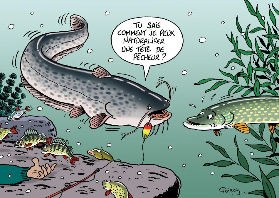 La pêche sur le pavé à permi