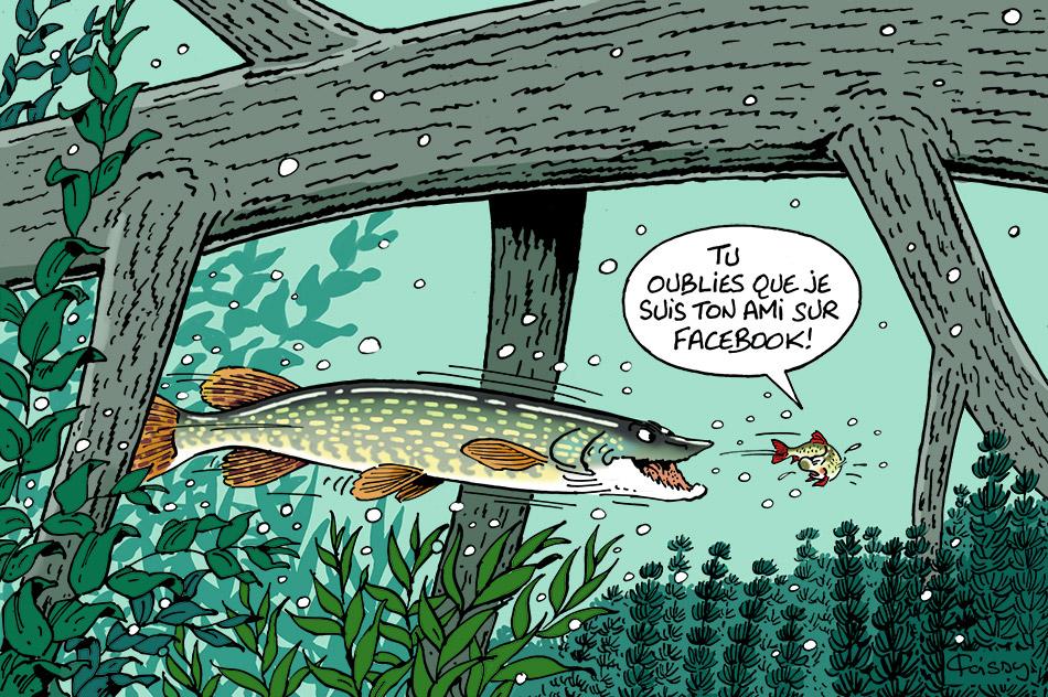 05-brochet-Facebook