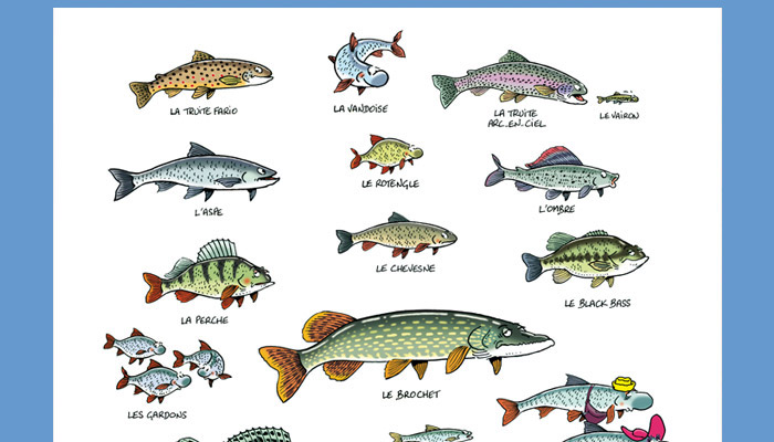 zoom poster poissons